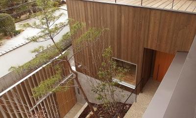 杉の家 杉格子の中庭のある家 (杉格子の中庭 2階ルーフテラス)