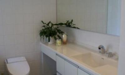 KO邸/吹抜空間のある都心のコートハウス (地下室の洗面台のあるトイレ)