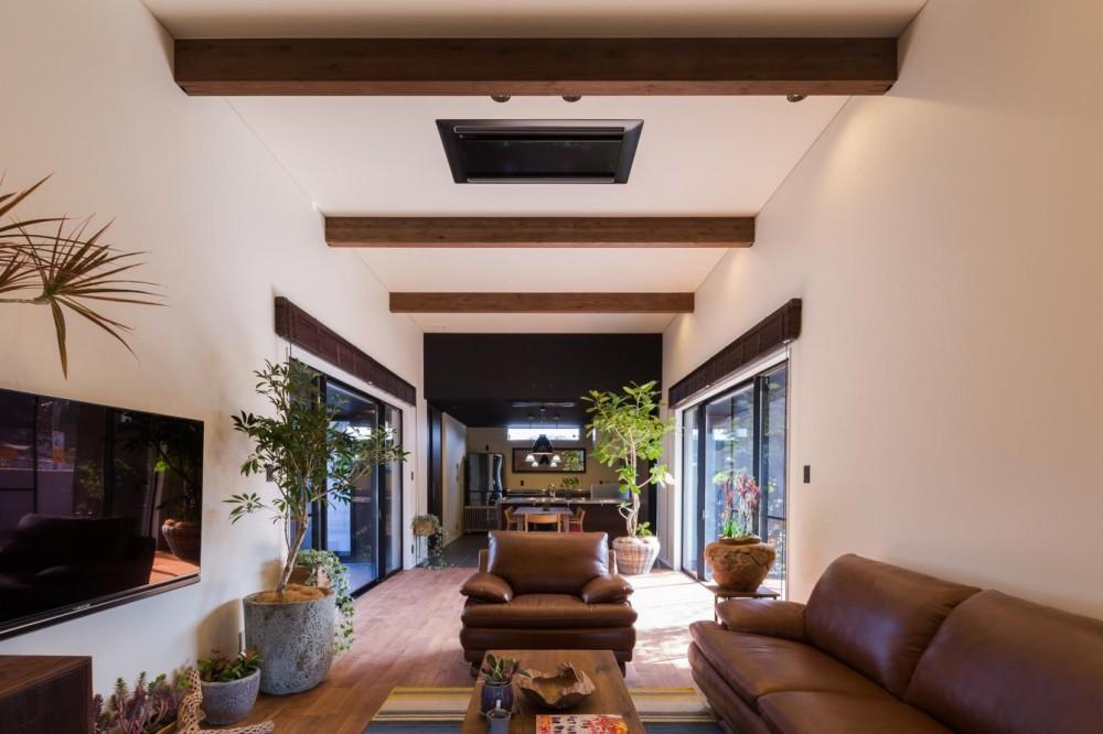 上富田町平屋の家 H邸 (観葉植物がたくさんあるリビング)