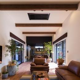 上富田町平屋の家 H邸-観葉植物がたくさんあるリビング