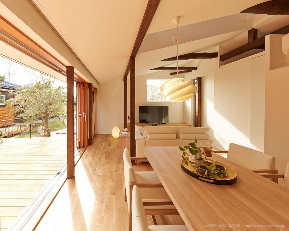 開放的な光が差し込むリビング (saisou house)