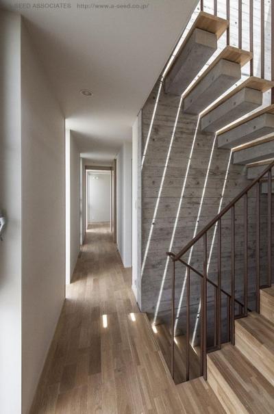 オープン型階段から差し込む光 (庭と共に時を刻む家「Garden on garden」)