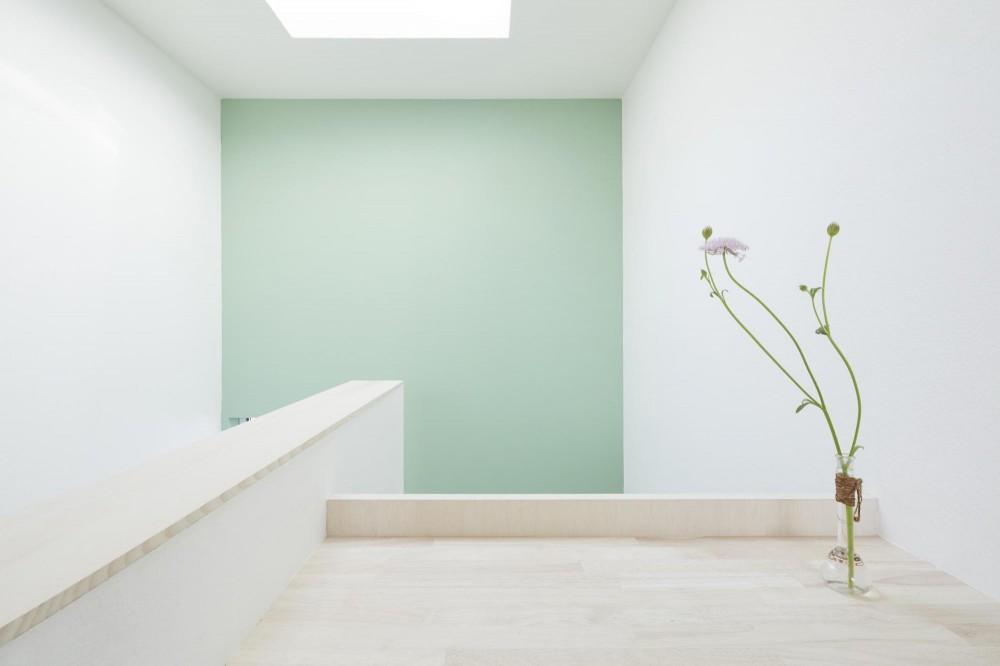 要町の家 吹抜けを通して光が溢れる家 (刻々と色の濃さを変える緑の壁)