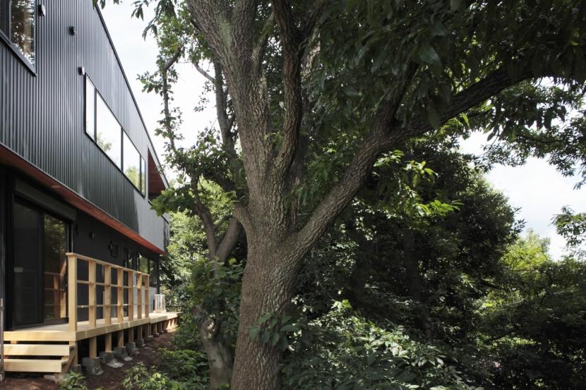 森に浮かぶ家の部屋 外観4