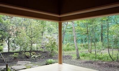 林の中の水平(軽井沢の別荘) (自然を感じる空間)