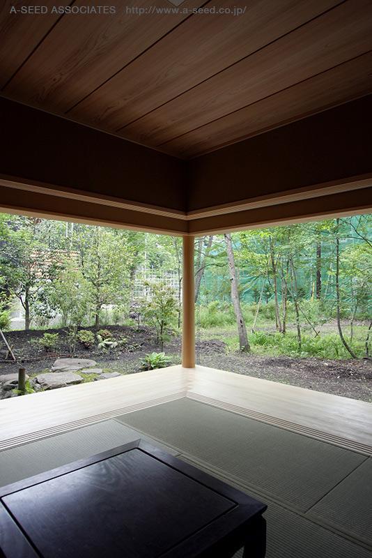林の中の水平(軽井沢の別荘)の部屋 自然を感じる空間