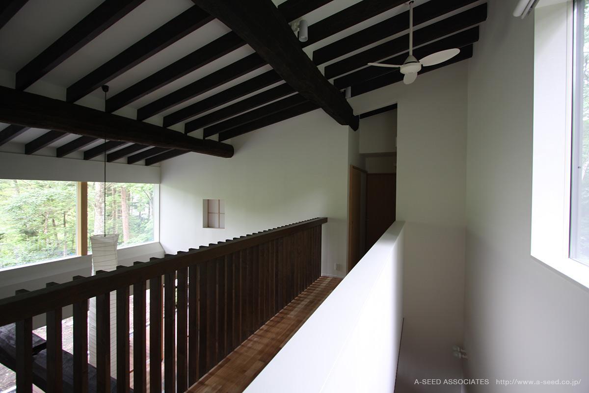 林の中の水平(軽井沢の別荘)の部屋 木を感じる廊下