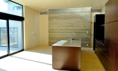 Y-HOUSE|豊かなリビング空間とテラスのあるRC平屋建て| (リビング・ダイニング・キッチン)
