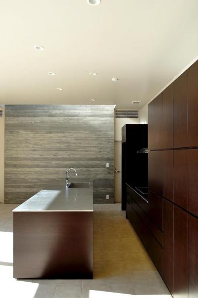 Y-HOUSE|豊かなリビング空間とテラスのあるRC平屋建て| (キッチン)