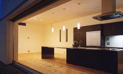 中庭と水盤のある家|上新田の家 (中庭から4mステンレス天坂キッチン見る)