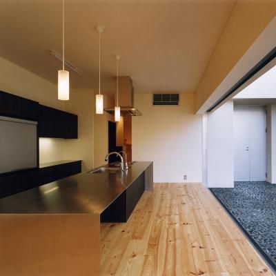 4mステンレス無垢天坂キッチンと繋がる中庭 (中庭と水盤のある家|上新田の家)