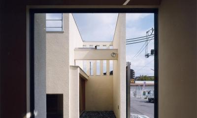 中庭と水盤のある家|上新田の家 (中庭と水盤04 離れ和室側 屋上テラスからの雨水が水盤へ注ぐ)