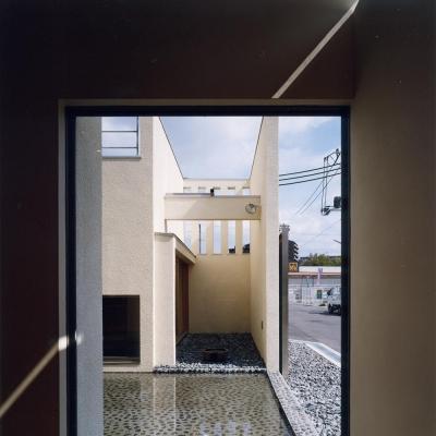 中庭と水盤04 離れ和室側 屋上テラスからの雨水が水盤へ注ぐ (中庭と水盤のある家|上新田の家)