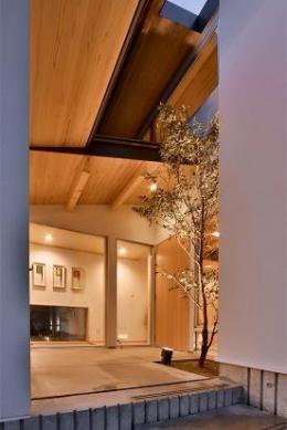 MJ2-house (シンボルツリーのあるエントランス)