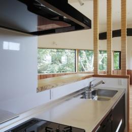 森に浮かぶ家