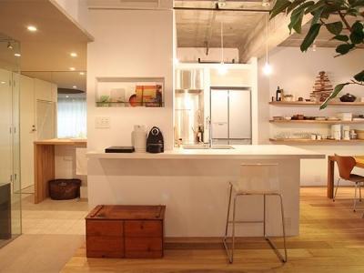 キッチン (HiSAKi—築48年でも、高級スイートルームに)