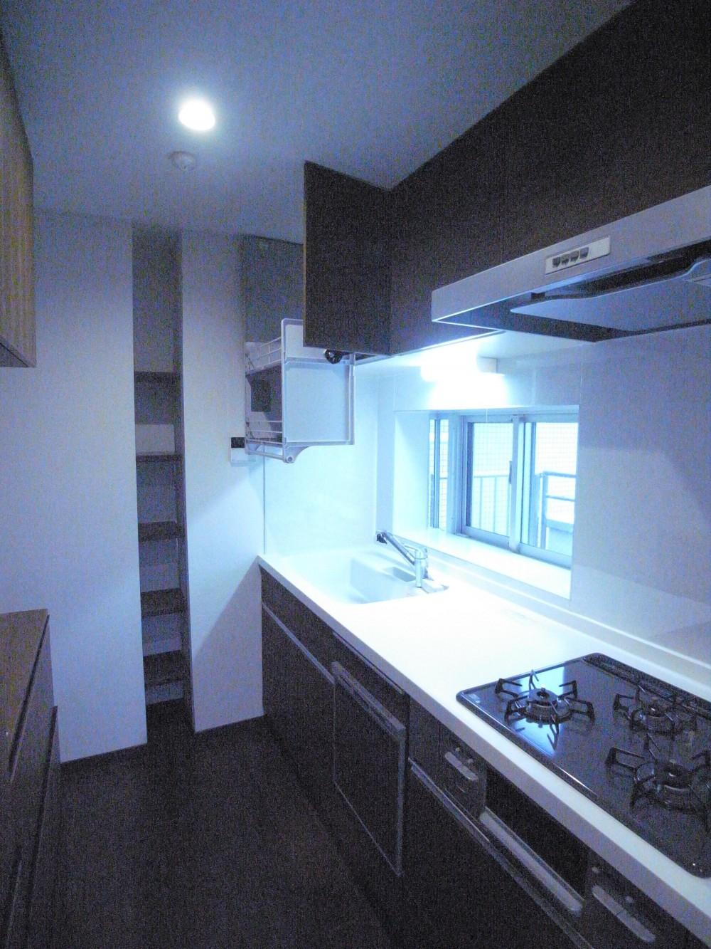 葛飾の一等地に建つ最上階、一部屋(ペントハウス)の魅力あふれるリノベーションマンション (一体感、開放感、使い勝手の共存したキッチン)