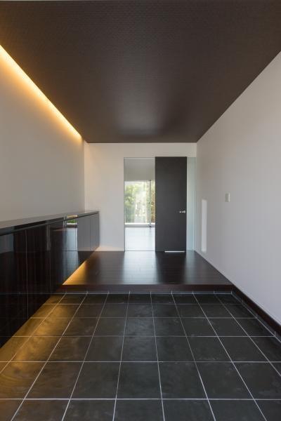 デザインにこだわったシンプルモダン住宅 (玄関)