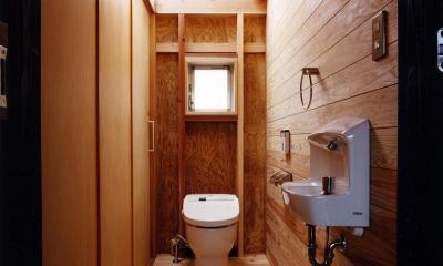 木造スケルトンの家 (トイレ)