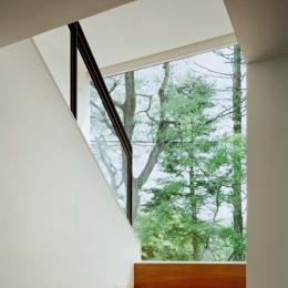 015軽井沢Tさんの家 (階段)