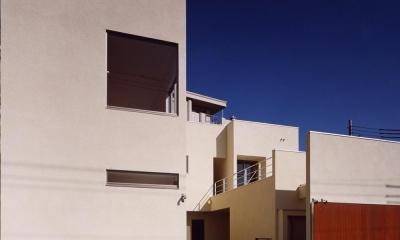 中庭と水盤のある家|上新田の家 (外観03 木製大型引戸を開放し中庭と繋がる)