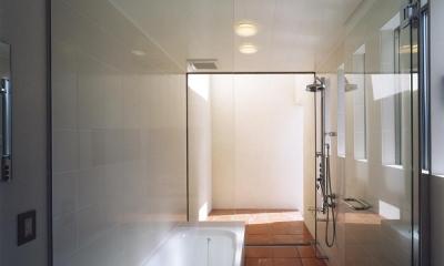 中庭と水盤のある家|上新田の家 (テラコッタのルーフテラスに繋がる ガラス張りバスルーム)