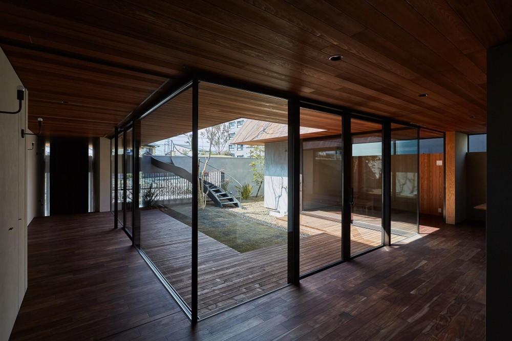 建築家:武藤 圭太郎「SHIMA」