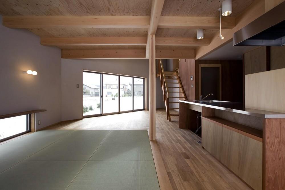 六角形の家 (LDK~フリースペース)