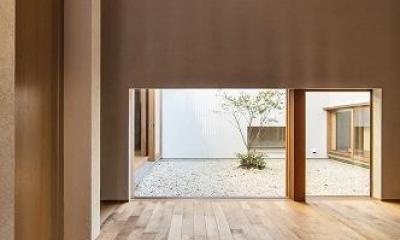 喜多町の家 (中庭の見える玄関ホール)