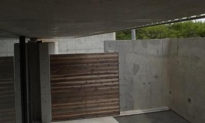 三つの中庭のある家|10mの大開口・擁壁をくり抜き地下のある家 (エントランス  中庭より 03)