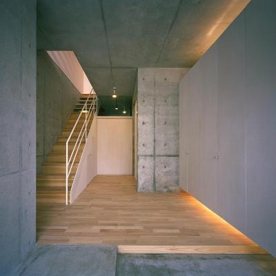 エントランス 玄関ホールより 06 (三つの中庭のある家|10mの大開口のある家)