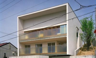 三つの中庭のある家|10mの大開口・擁壁をくり抜き地下のある家