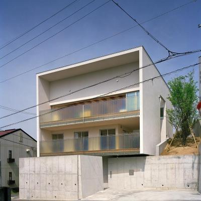 三つの中庭のある家|10mの大開口のある家 (キュービックな外観 01)