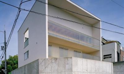 三つの中庭のある家|10mの大開口・擁壁をくり抜き地下のある家 (キュービックな外観  02)