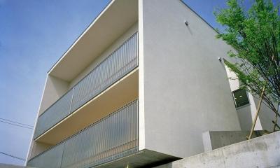 三つの中庭のある家|10mの大開口・擁壁をくり抜き地下のある家 (キュービックな外観  03)