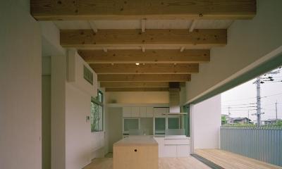 三つの中庭のある家|10mの大開口・擁壁をくり抜き地下のある家 (キッチン)