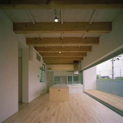 キッチン (三つの中庭のある家|10mの大開口のある家)