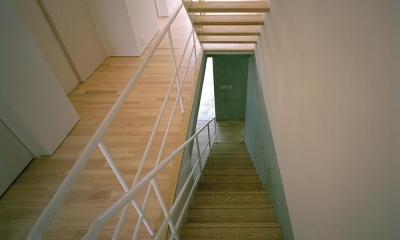 三つの中庭のある家|10mの大開口・擁壁をくり抜き地下のある家 (階段室)