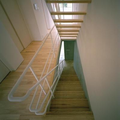 階段室 (三つの中庭のある家|10mの大開口・擁壁をくり抜き地下のある家)