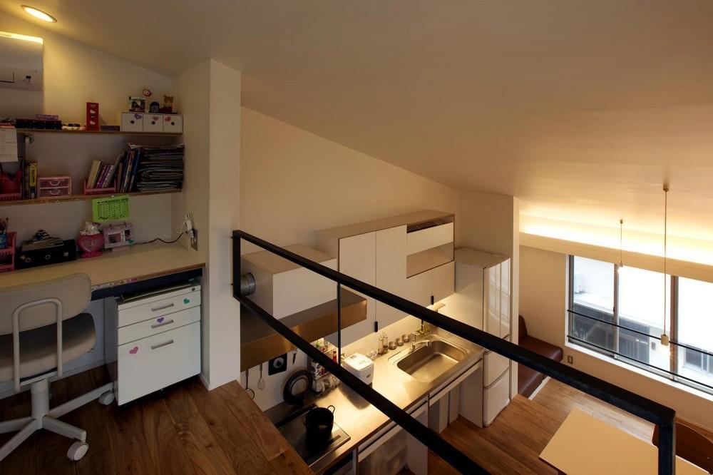 スキップフロアの家Ⅱ (2段から見下ろす)