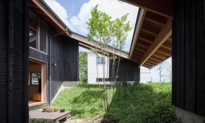 段々畑の家 (中庭)