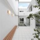 WHITE BOX&BLACK WALLの写真 2階テラスより中庭を見る