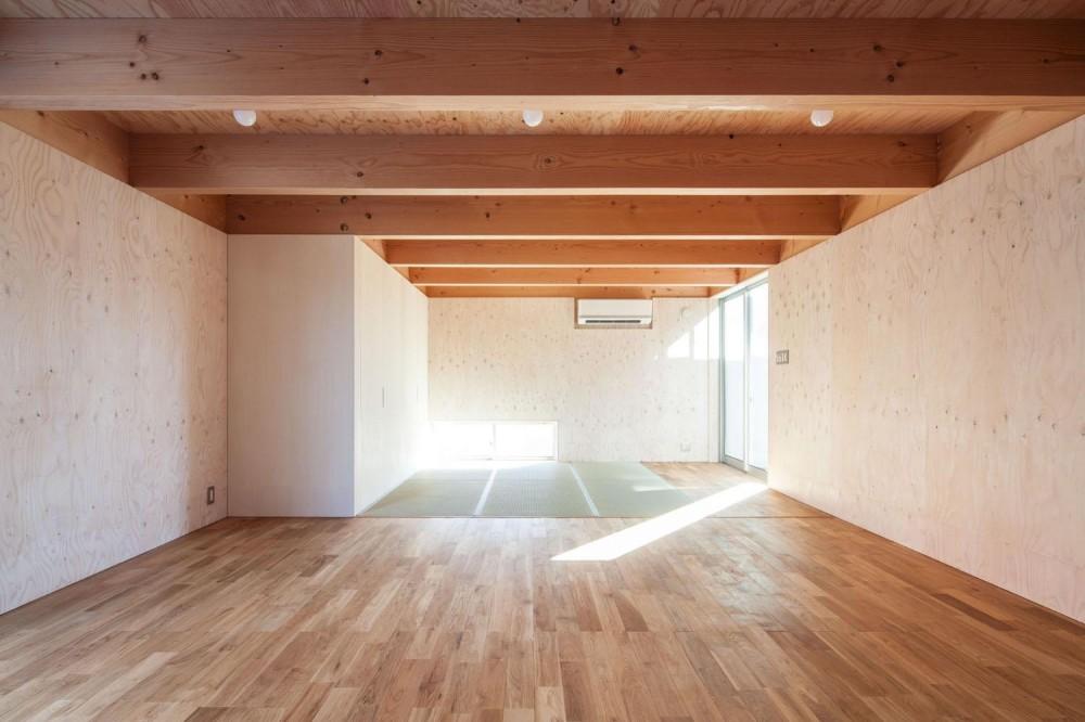 indoor terraceの家 (フィットネスルーム)