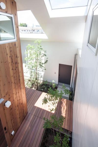ブリッジから見下ろす (indoor terraceの家)