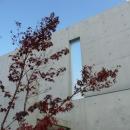 Nさんの住家の写真 コンクリート打放しの外壁