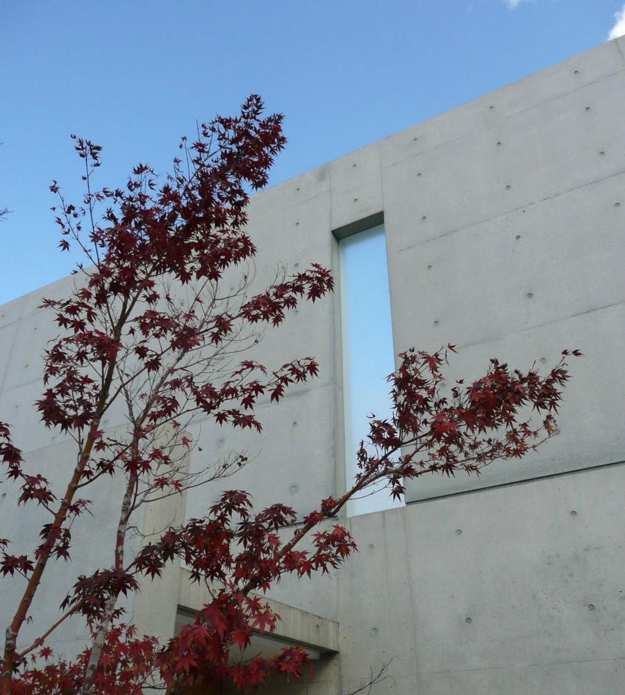Nさんの住家の部屋 コンクリート打放しの外壁
