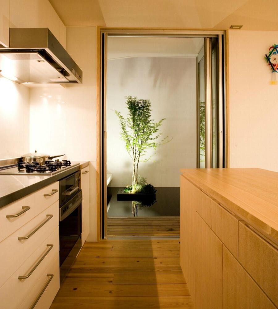 Nさんの住家 (テラスと隣接するキッチン)
