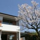 桜並木のある外観