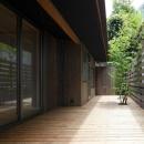目神山の住家の写真 シンボルツリーのあるウッドデッキ