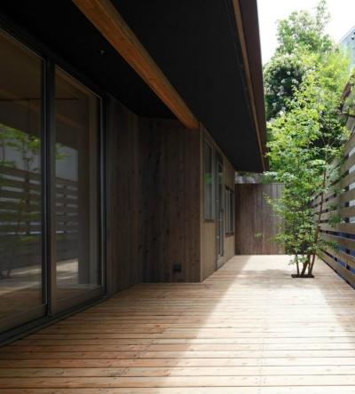 シンボルツリーのあるウッドデッキ (目神山の住家)